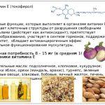 kakie-osnovnyie-funktsii-vyipolnyayut-vitaminyi