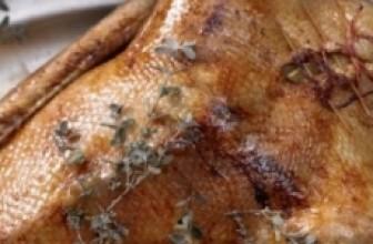 Приготовление пернатой дичи – много вкусных рецептов для разных условий