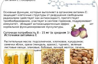 Какие основные функции выполняют Витамины